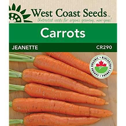 Jeanette carrots